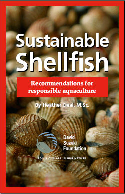 'Sustainable Shellfish', David Suzuki Foundation